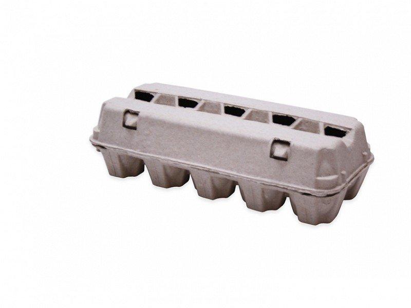 0281001-eierdoos-pulp-voor-10-eieren-lr